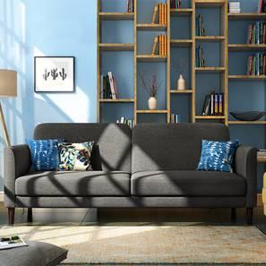 Felicity sofa cum bed grey 00 lp