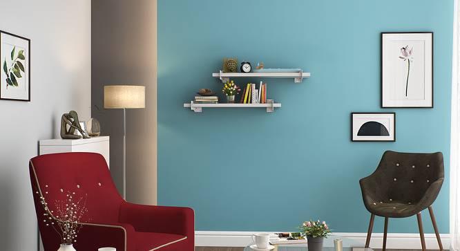 Ryter Shelves - Set Of 2 (White, 2.5' Shelf Width) by Urban Ladder