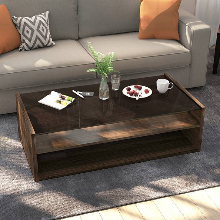 Alita Storage Coffee Table