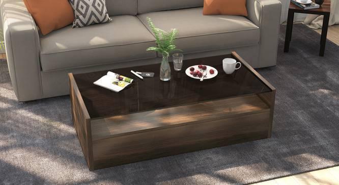 Alita Storage Coffee Table (Walnut Finish, Full Drawer Configuration) by Urban Ladder