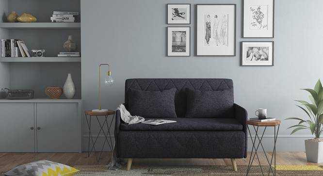 Makati Sofa Cum Bed (Dark Grey, Yes) by Urban Ladder