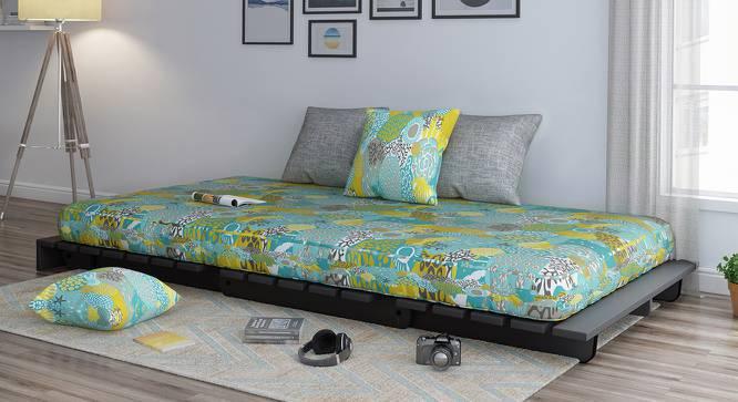 Finn Futon Sofa Cum Bed (Carribean Treasure, Yes) by Urban Ladder