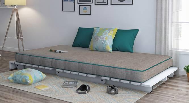 Finn Futon Sofa Cum Bed (Cinnamon Dust, Yes) by Urban Ladder
