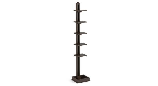 Cumbria Bookshelf (American Walnut Finish) by Urban Ladder