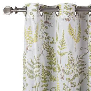 Wilderness curtain wildfern7 lp