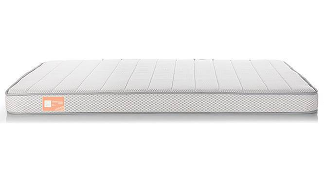 Theramedic Coir & Foam Mattress (Single Mattress Type, 6 in Mattress Thickness (in Inches), 72 x 36 in Mattress Size) by Urban Ladder