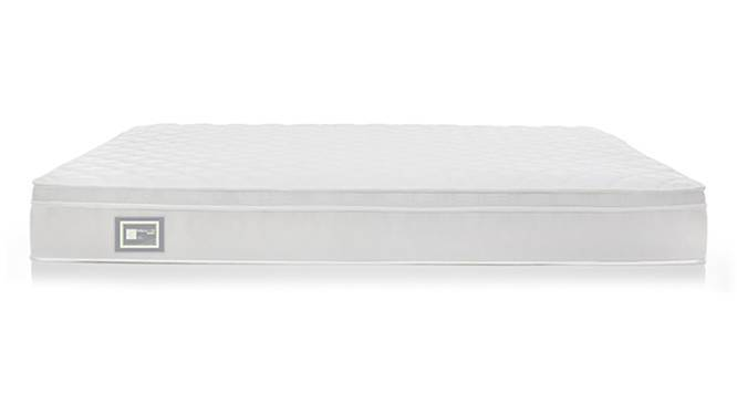 Dreamlite Bonnel Spring Mattress with Eurotop (Queen Mattress Type, 8 in Mattress Thickness (in Inches), 75 x 60 in Mattress Size) by Urban Ladder