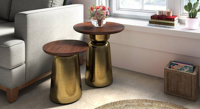 Ebisu Side Table Set (Brass) by Urban Ladder
