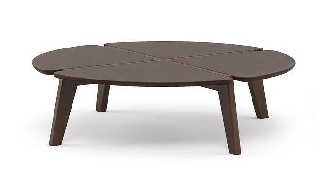 Gilmore Coffee Table (Dark Walnut Finish) by Urban Ladder