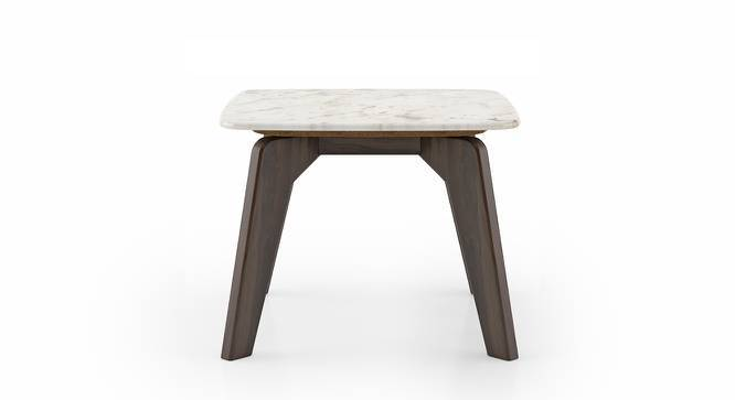 Galatea Marble Side Table (American Walnut Finish) by Urban Ladder