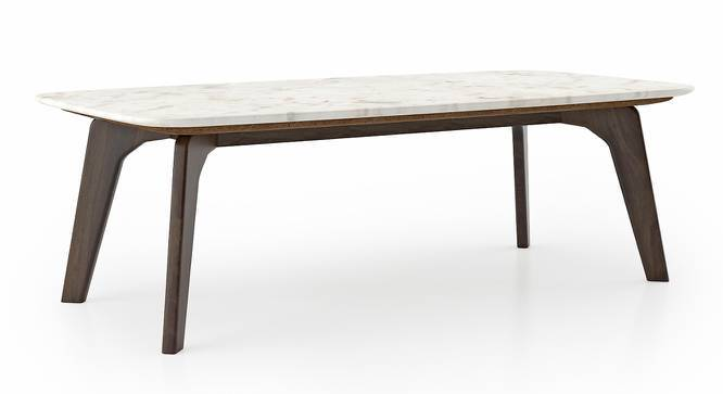 Galatea Marble Coffee Table (American Walnut Finish) by Urban Ladder