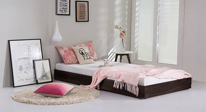Merritt Trundle Bed (Mahogany Finish, Single Bed Size) by Urban Ladder