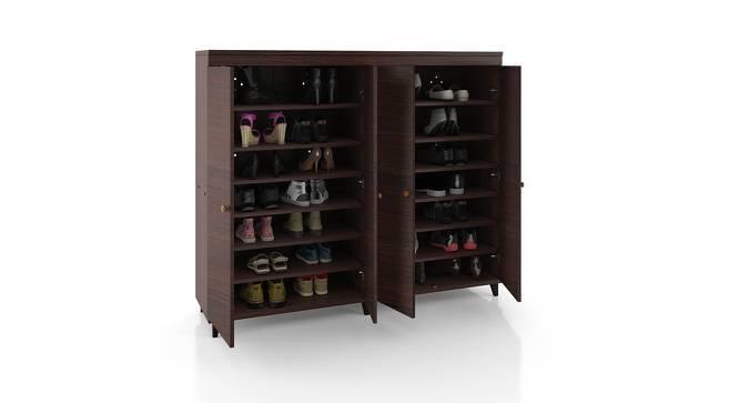 Zanotti Shoe Cabinet (Walnut Finish, 48 Pair Capacity) by Urban Ladder